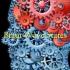 Brain Wave States
