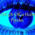 ENJOY 5% Off at Hollyvilla Psychic